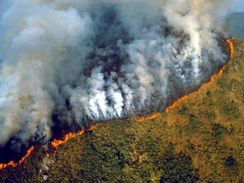 Arrasador incendio en el Amazonas