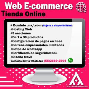 ECOMMERCE diseño web y marketing digital