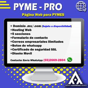 MARKETING DIGITAL , DISEÑO Y PROGRAMACIÓN WEB MÉXICO 7